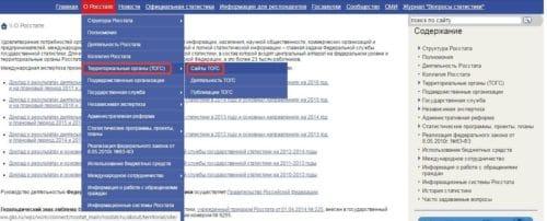 Сайт ОКПО, Налоговой, Росстата поможет найти код ОКПО по ИНН организации бесплатно