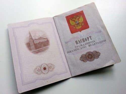 Развернутые паспорт